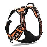 REXSONN® Ultra-Soft Hundegeschirr Softgeschirr Brustgeschirr Hunde Geschirr Sicherheitsgeschirr pet dog vest Harness - 4