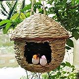 XINDUI Casa de colibrí Tejida a Mano de Paja Colgante Nido de pájaro cabaña de pájaro Decoraciones de árbol casa de pájaro para Audubon Finch Canary(L)