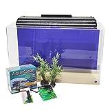 SeaClear 29 Gallon Show Acrylic Aquarium Junior Executive Kit Cobalt Blue; 30' L x 12' W x 18' High