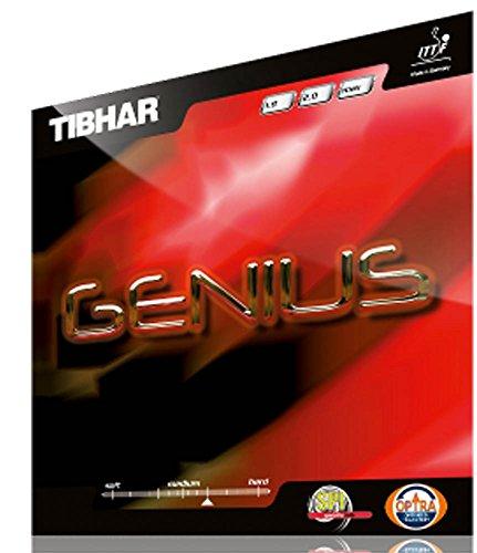 Tibhar Genius max schwarz