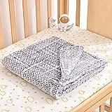 Baby Blanket for Boys Girls Newborn Infant Toddler, Soft Flannel Fleece Receiving Baby Blanket for Crib Stroller, Lightweight Cozy Warm Comfy Stroller Throw Daycare Preschool