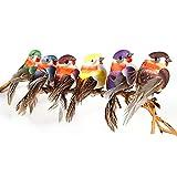 Yolococa Uccelli Artificiali con Clip Decorazione di Albero di Natale Ornamenti per Uccelli Multicolore (12 Pezzi)