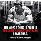 zolto Colección Arnold Schwarzenegger the worst thing i can be poster 30,5 x 45,7 cm