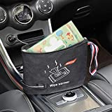DDSKY Portable Car Wipes Heater Warmer Baby Wipes Thermostat Heating Bag, DC 12V, 9.45 x 6.3 inch