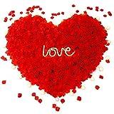 3000 pezzi di petali di rosa rossa artificiale, petali di rosa finti artificiali, petali di fiori di seta non tessuti riutilizzabili per San Valentino, matrimonio, evento, festa, decorazione