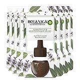 Botanica by Air Wick - Flacone di olio profumato - Profumo: eucalipto e salvia - sostenibile con ingredienti naturali - 7 ricariche di olio profumato