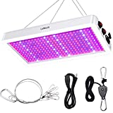 LaMuVii [2020 Newes] 2000W LED Grow Light Full Spectrum Grow Lamp for Greenhouse Hydroponic Indoor Plants Veg and Flower,Waterproof/Anti-Leakage
