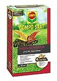 Compo SAAT Rasen-Reparatur-Mix, Mischung aus Rasensamen und Rasendünger mit 3 Monate Langzeitwirkung, 1,2 kg, 50 m²