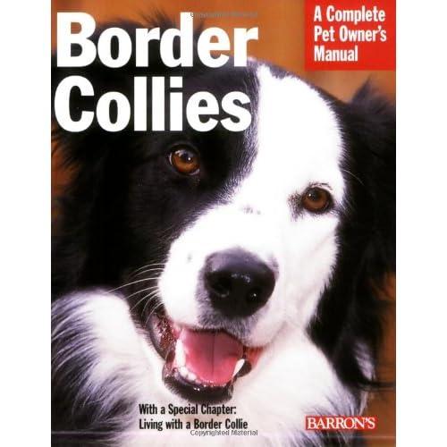 Border Collies Amazoncom
