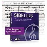Software software Sibelius Music Notation - Licenza perpetua (valida per sempre) con suppo...
