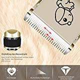 Zoom IMG-1 pedy tosatrice cani gatti clipper