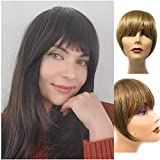 Clip in Bangs - SyntheticHair Bang Extensions, Realistic & Attractive Air FringeClip On Bangs -Faux Bangs Hair Clip, One PieceFake Hair Bangs with Templesfor Women (#24/16 Golden Blonde)