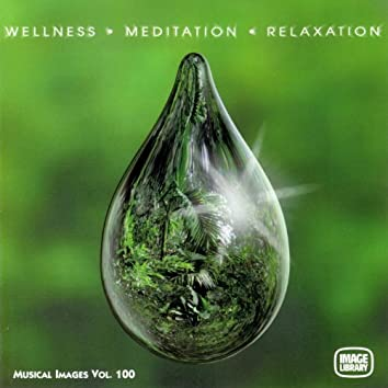 Wellness Meditation Relaxation: Musical Images, Vol. 100