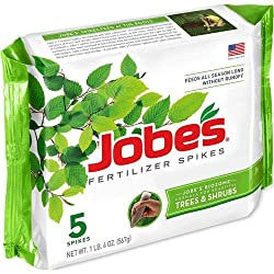 best fertilizer for dwarf apple trees