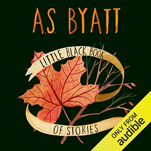 Little Black Book of Stories cover art