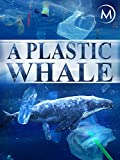 A Plastic Whale