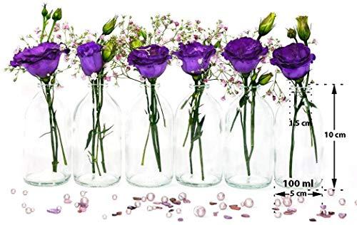 casavetro 24 x Mini Vase Glasfläschchen kleine Flasche Tischvasen Set Glas Deko-Flaschen Väschen Vasen Hochzeit-Deko_(TR 100ml ohne Korken)