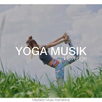 Yoga Musik i Sverige - Instrumentella Bakgrundsmusik med Naturljud och Vitt Brus