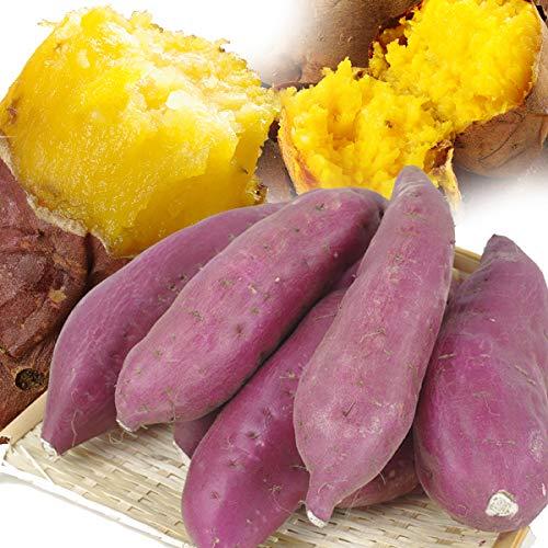 国華園 食品 さつまいも 熊本産 品種おまかせ 5kg ご家庭用 サツマイモ べにはるか べにあずま シルクスイート 安納芋