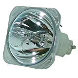 SpArc Platinum for Viewsonic PJ559D Projector Lamp (Bulb Only)