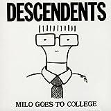 Milo Goes to College...