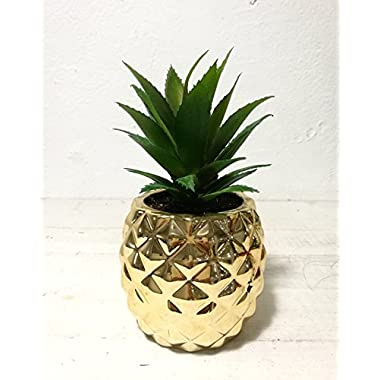 Artificial Potted Succulent 7.8  Pineapple Gold Home Tabletop Decoration
