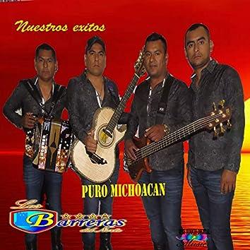 Nuestros Exitos, Puro Michoacan
