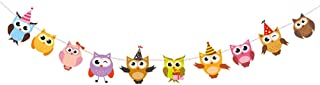 PRETYZOOM 2pcs Owl Pal Party Themed Decorations Colorful Owl Paper Banner Garland for Home Birthday Party Baby Shower Classroom Decorations Supplies