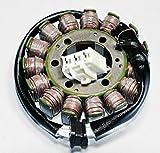Rick's Motorsport Electrics Powersports Stators