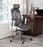 MISURAA Imported Xenon High Back Ergonomic Office & Home...