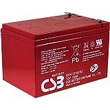 CSB Batería Plomo-ácido EVH12150 12V 15Ah cíclica