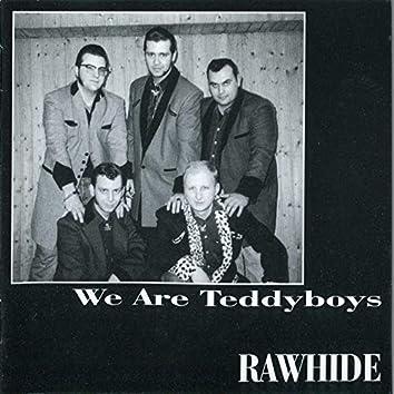 We Are Teddyboys
