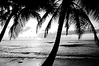 Beach with palm trees-Summer landscape 02 - Art Print On Canvas Rolled Wall Poster Print - Black and White 30