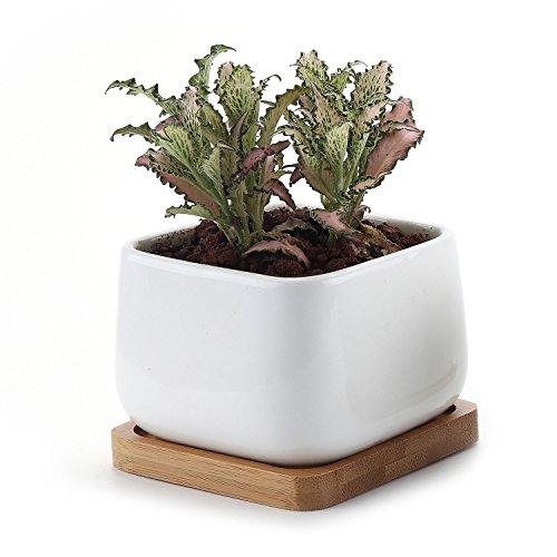 T4U 10cm keramiek vetplantenpotten cactus plant potten kleine bloempotten met bamboe onderzetter afgeronde vierkant NO.2 wit