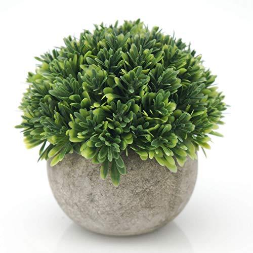 6 pezzi Creativo Moss Ball Flower Pot Fioriera Bonsai Plant Holder Casa 15