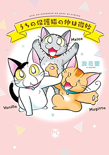 [浪花愛]のうちの保護猫の仲は微妙 (ペット宣言)