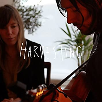 Harvesting (Acoustic)