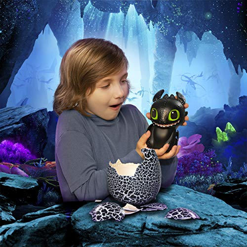 Dreamworks Dragons, Hatching Toothless Interactive Baby Dragon with Sounds, for Kids Aged 5 & Up