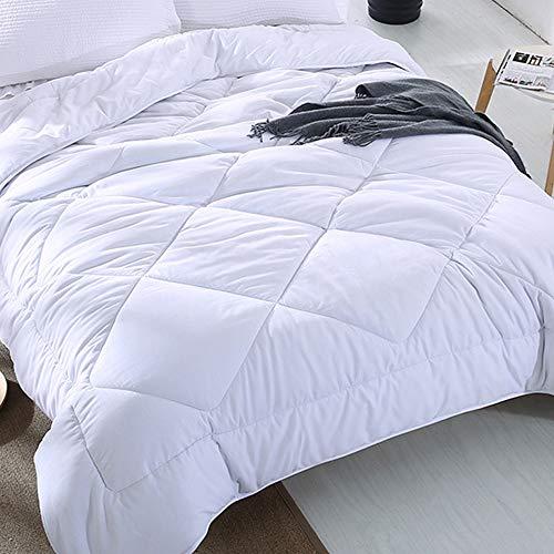 Oikupe Couette de literie Hiver, Couverture matelassée Microfibre avec Remplissage, couvertures à caissons avec 4 Coins Design Ruban, Respirant et la Peau ympathetic,150x200cm