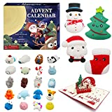 WEYON Advent Calendar 2021 for Kids, 24 Pcs Mochi Squishy & Exclusive Pop-Up 3D Cut Out Christmas Greeting Cards, 4 Large Soft Rubber Toys Included Countdown Calendars