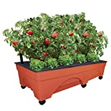 """EMSCO Group Big City Picker Raised Bed Grow Box – Self Watering and Improved Aeration – Mobile Unit with Casters – Extra Large 48"""" x 20"""" Design"""