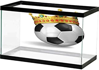 bybyhome Decorative Paper King,Football Soccer Championship Inspired Ball Crown with Ornaments Image Print,Black White and Gold 3D One Side Fish Tank
