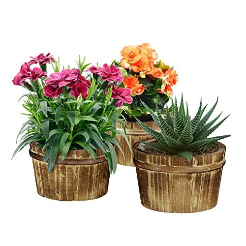 Relaxdays Fioriere in Legno, Set 3 Portavasi per Il Balcone & Il Davanzale, Vasi in Corteccia per Il Giardino, Naturale