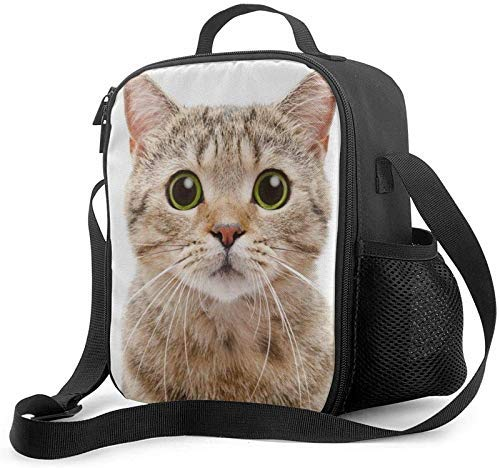 Leakproof Insulated Reusable Cooler Cute Suprise Cat Lunch...