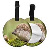 Round Travel Luggage Tags,Animal Photography In Eastern Europe Slug With Hedgehog Scenes From Nature Print,Leather Baggage Tag