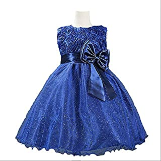 Special Designd Pageant Flower Girl Princes Dress Kids Party Wedding Bridesmaid Tutu Dress 5to 6year