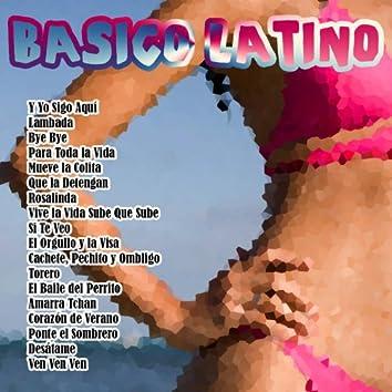 Básico Latino