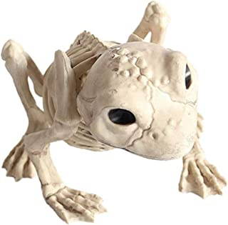 Halloween Frog Skeleton Spooky Frog Bone Model Party Scary Props for Halloween Decorations Holiday Party Decor Supplies