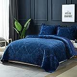XIUWOUG Tagesdecke Bettüberwurf 230X250cm Baumwolle, Gesteppte Steppdecke Mit Blauer Plüschstickerei, Leicht zu pflegene Sofaüberwurf Gesteppte Mit 2 Kissenbezüge,Blau,230x250cm