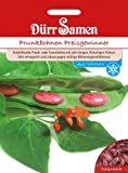 Dürr Samen 0326 Prunkbohne Preisgewinner (Prunkbohnensamen)